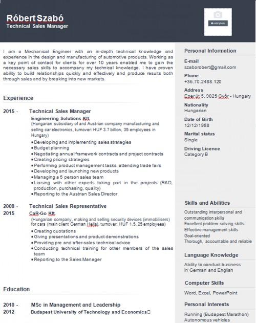 CV minták 4
